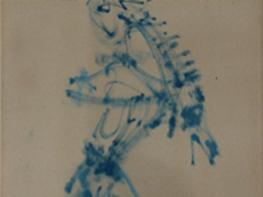 Capture - Lucien coutaud Homme bleu