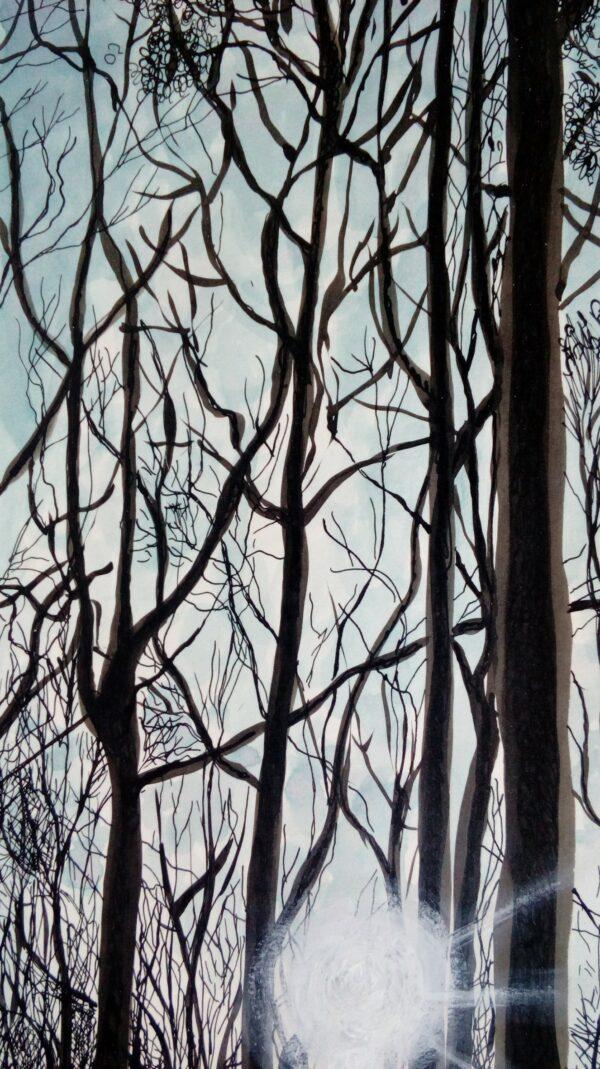 La forêt Colbert 2 (Michèle CARANOVE)