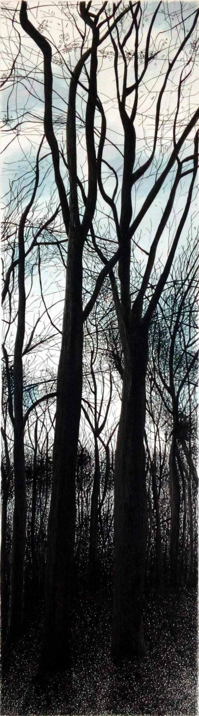 La forêt Colbert 4 (Michèle CARANOVE)