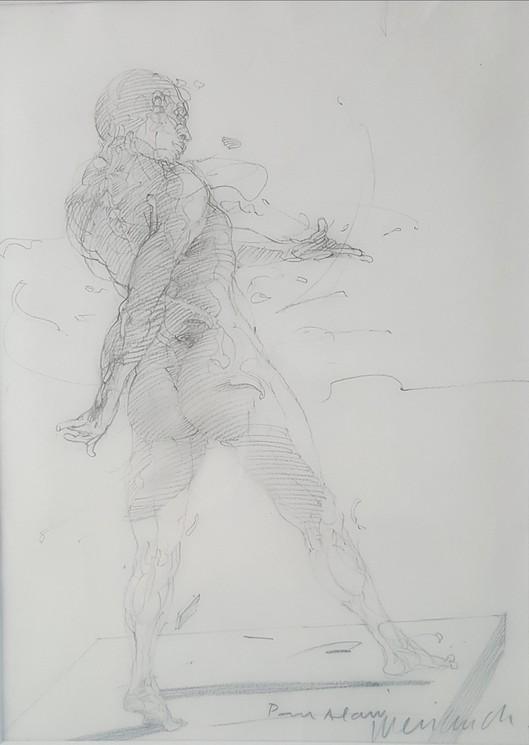 L'écorché (Claude Weisbuch)